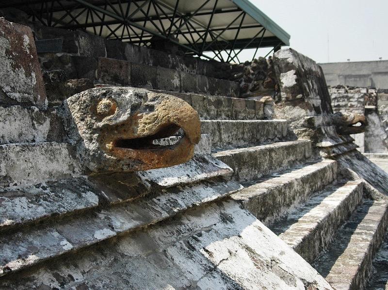 Arqueólogos explican el valor del águila real entre los mexicas