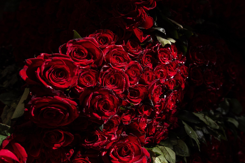 Las rosas del mercado Jamaica