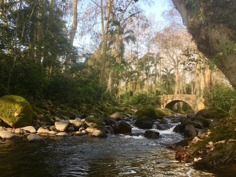 Río Trianón, Coatepec