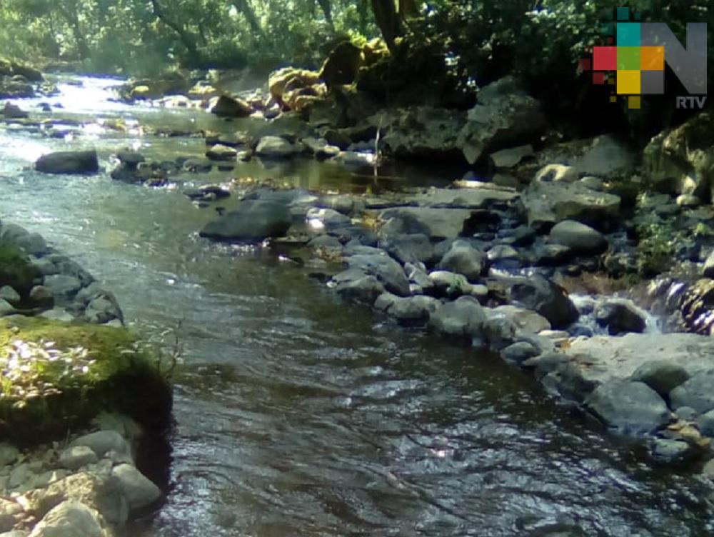 Ríos Cazones, Tecolutla y Nautla a la alza, pero sin mayores riesgos