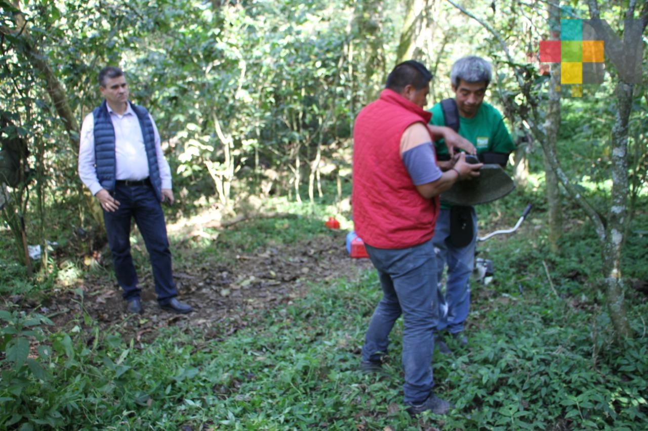 """Contribuye SEDEMA en investigación arqueológica de """"El Tejar-Garnica"""", en Xalapa"""