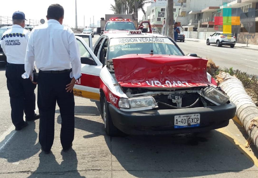 Cae palmera sobre taxi, sólo causó daños materiales