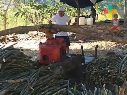 Ante baja producción de caña de azúcar, ofrecen productos derivados del trapiche en Ilamatlán