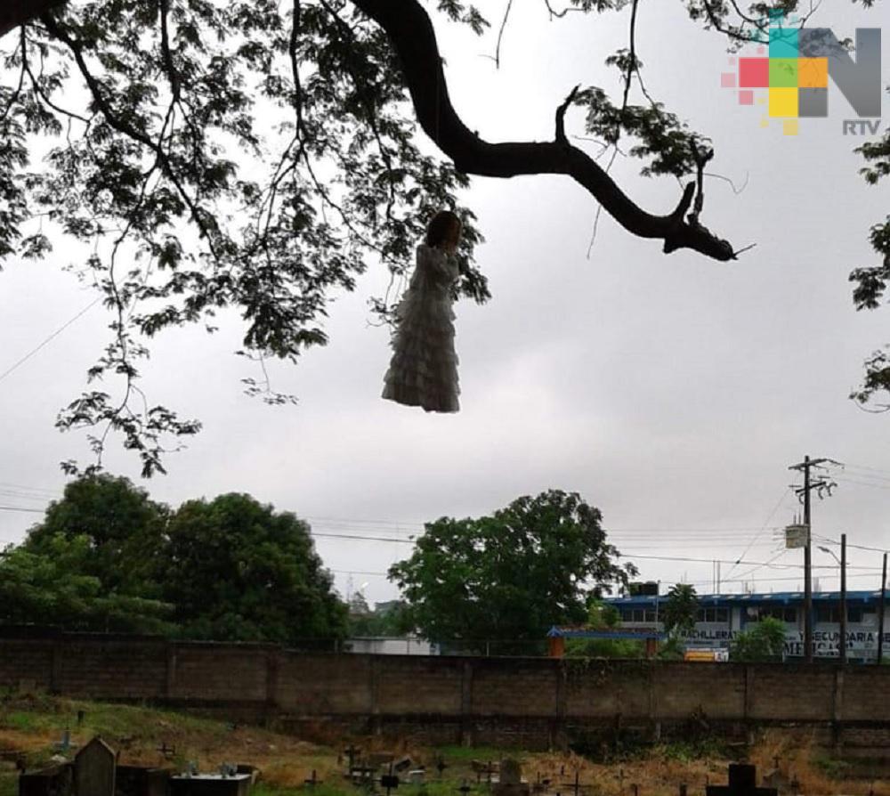 Un árbol de 100 años, resguarda una de las leyendas más contadas en Minatitlán
