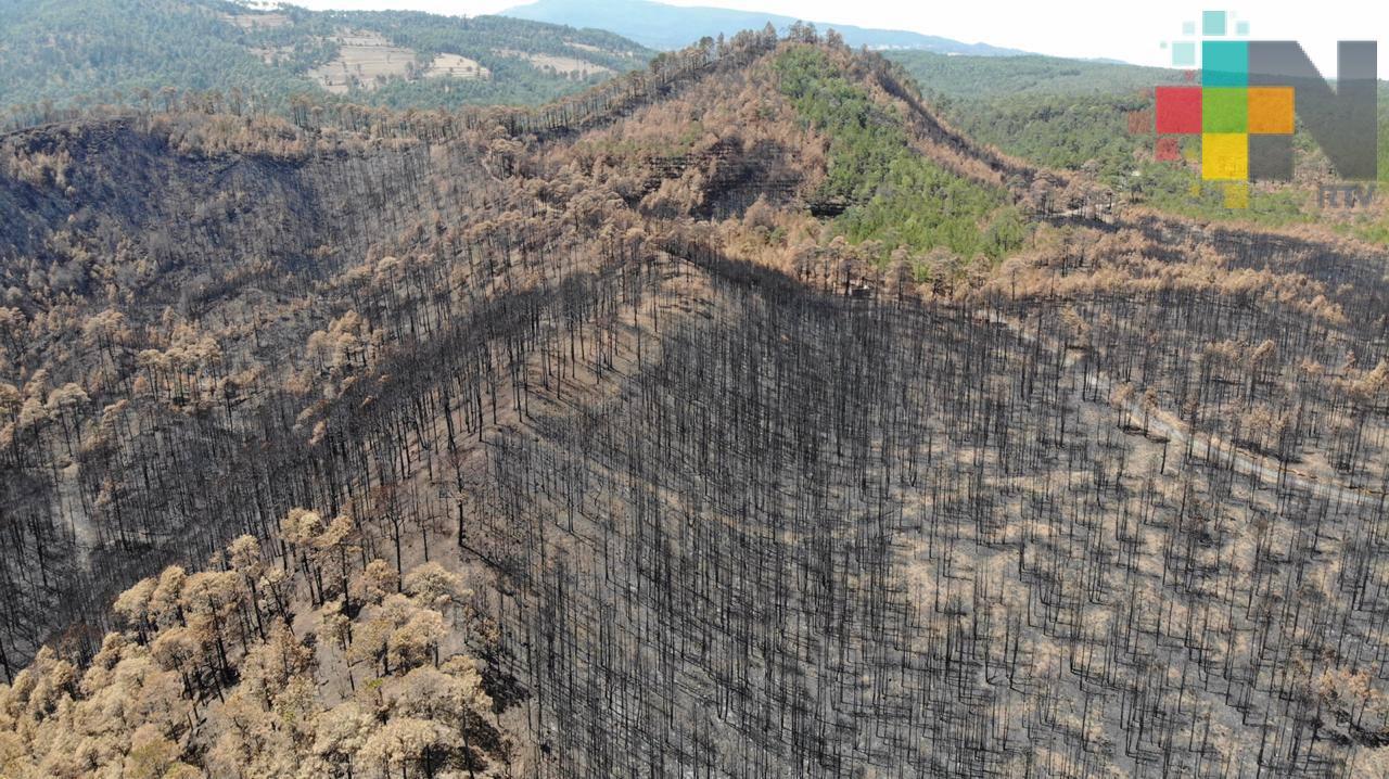 San Juan del Monte, después del incendio