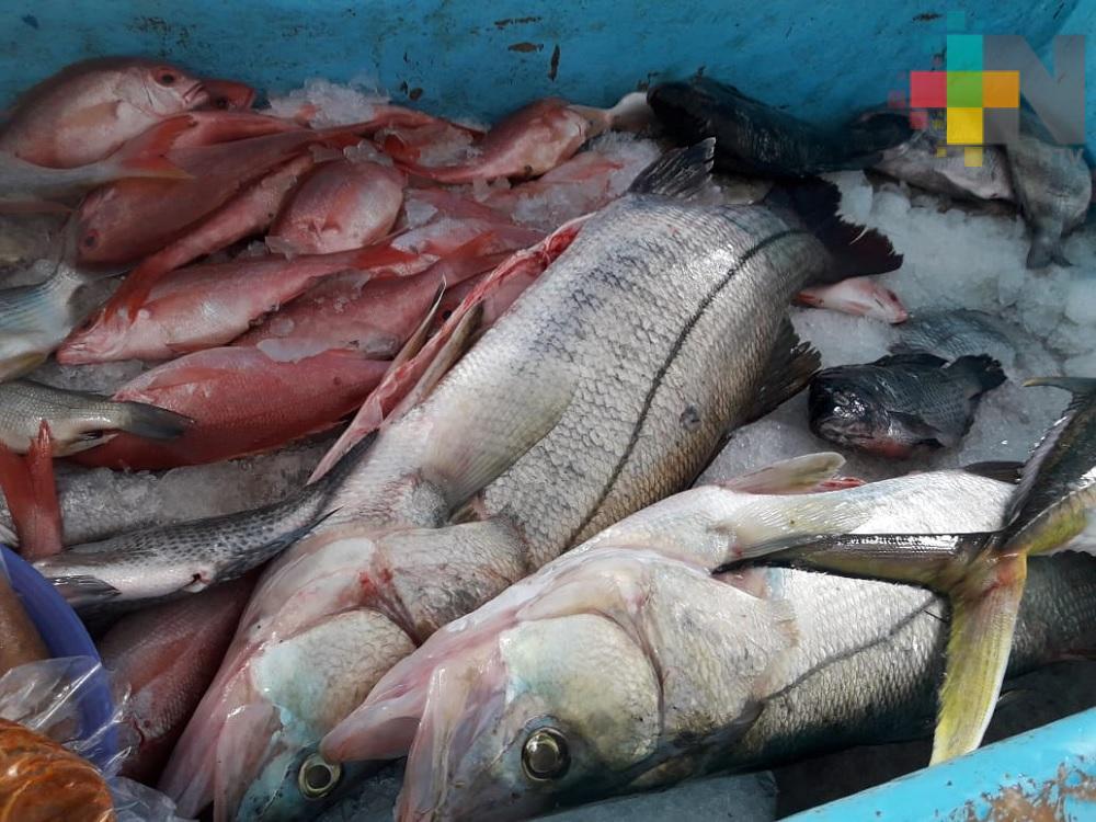 En franja costera Costa Esmeralda mantienen precio de pescados y mariscos
