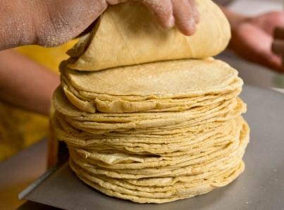 Preocupa a productores de maíz alza en precio de la tortilla