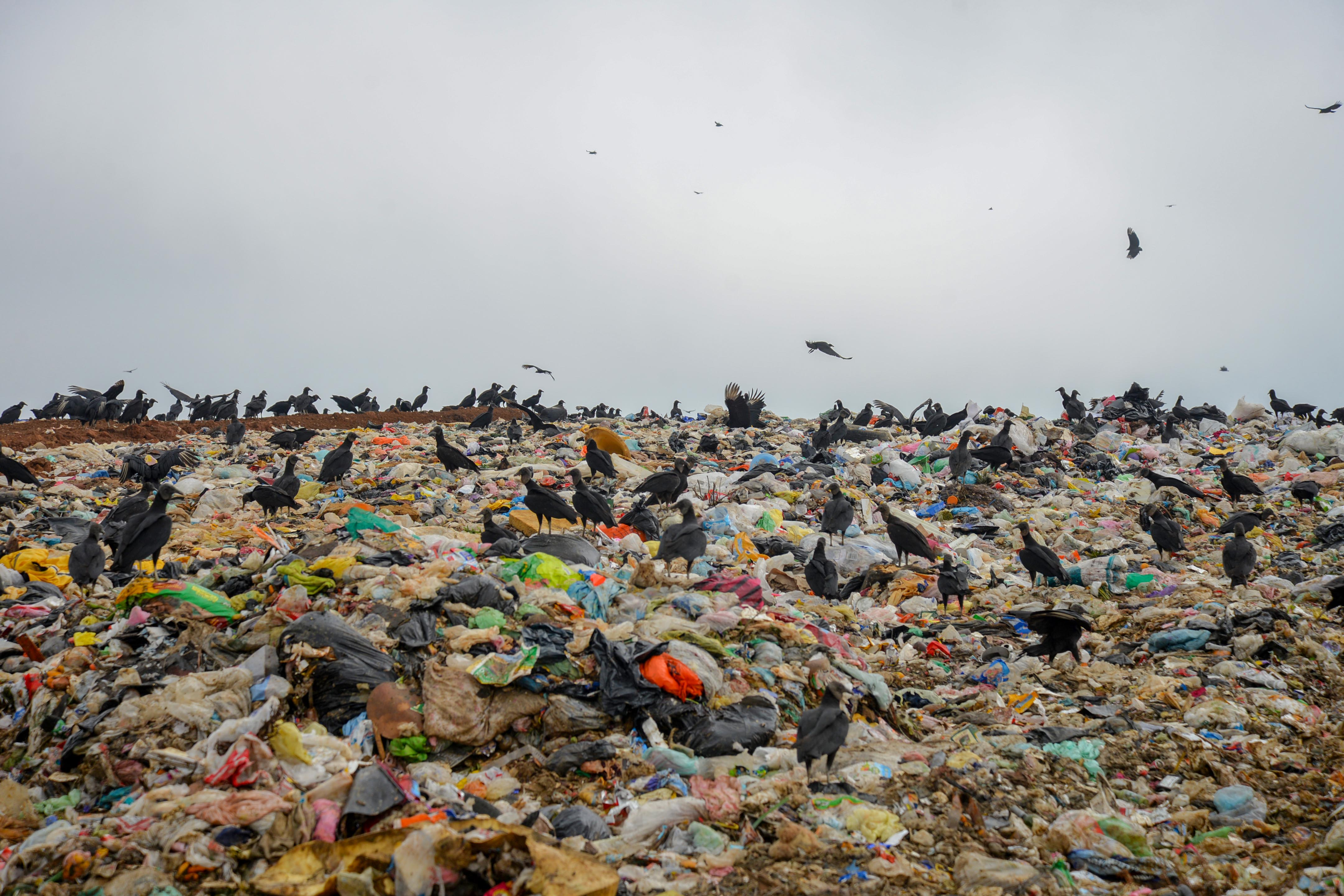 Orfis iniciará revisión sobre manejo de residuos sólidos urbanos en los ayuntamientos