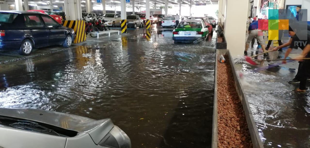 Anegamientos y caída de árboles deja lluvia en la región de Xalapa y Coatepec
