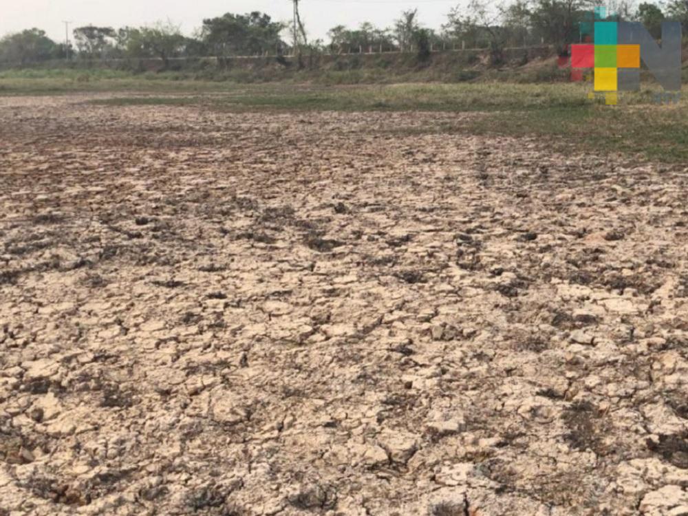 Prevén tres meses más con déficit de lluvias en sur-sureste del país