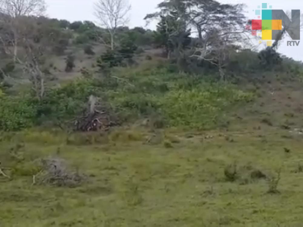 Personal de la Procuraduría Agraria  llega a localidades de Tuxpan