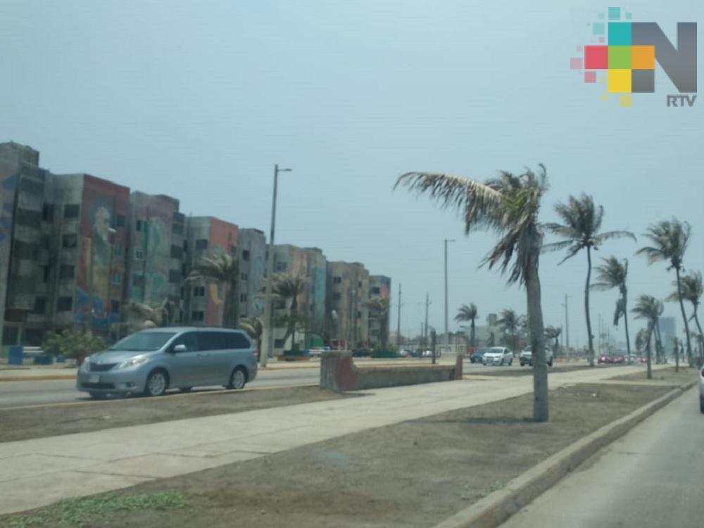 En Coatzacoalcos emprenden acciones para que la ciudad cuente con mayor vegetación