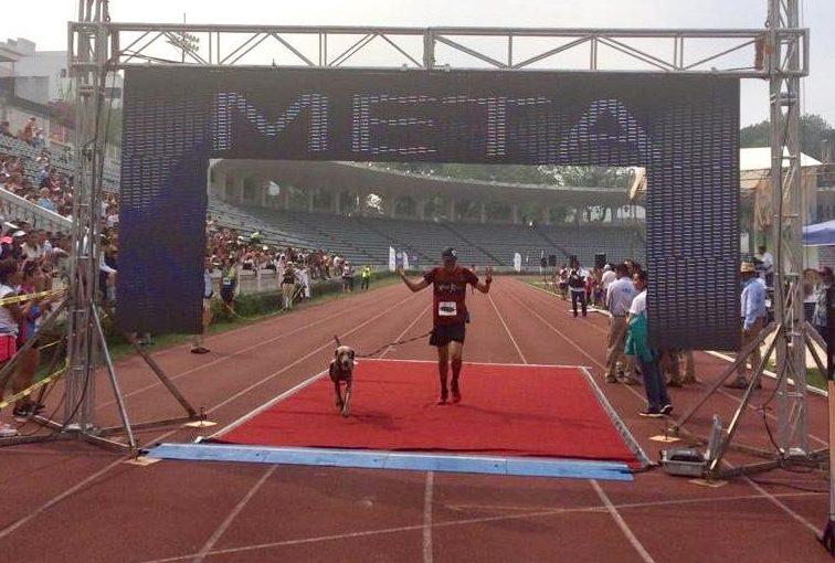 Perro corrió completo el Maratón de Xalapa 2019