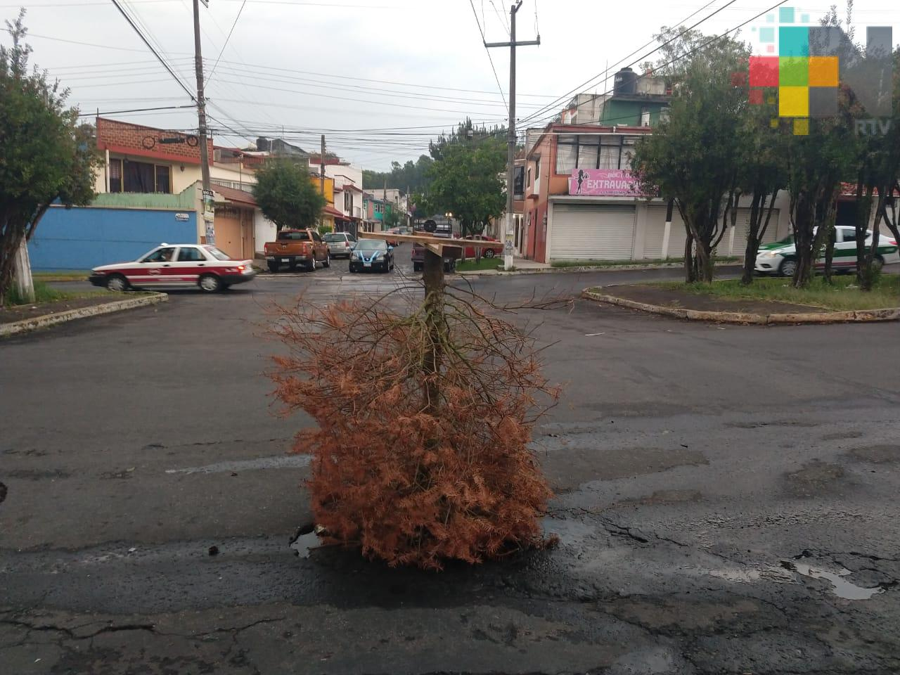 Reportan alcantarilla destapada en colonia Obrera Campesina