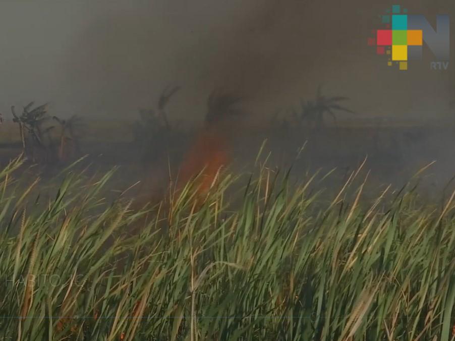 Veracruz necesita un programa de contingencia ambiental
