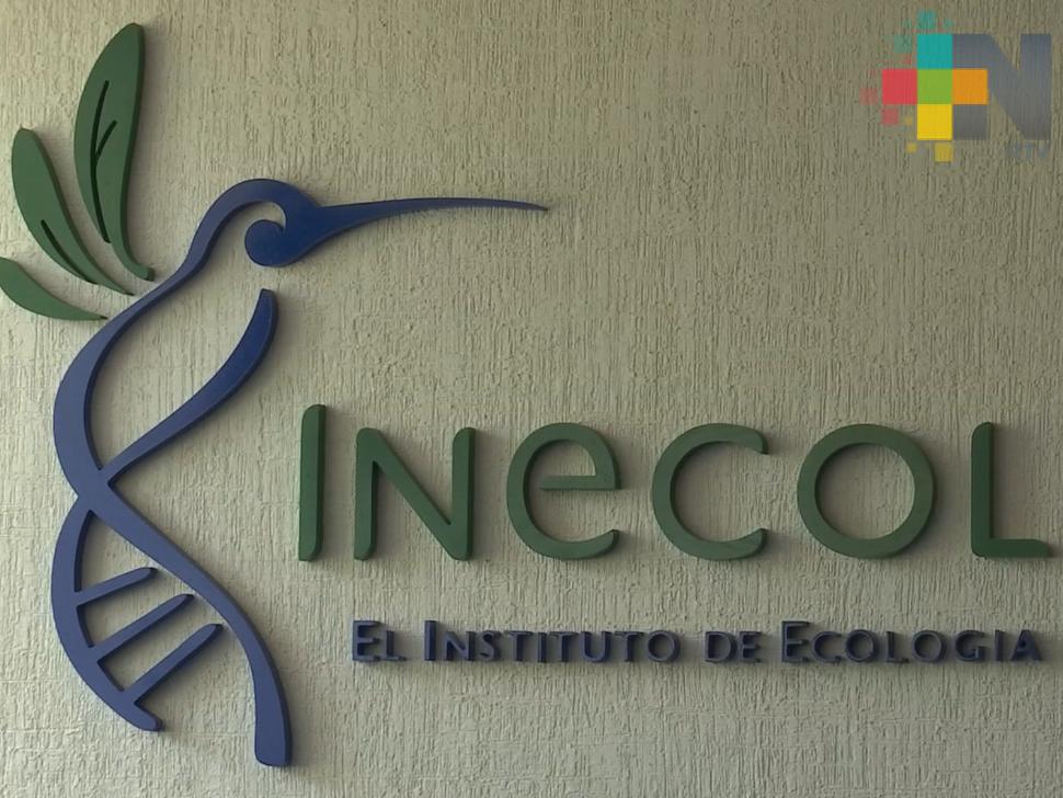 Investigadores y alumnos de Inecol cursarán semestre  de manera virtual a partir de septiembre