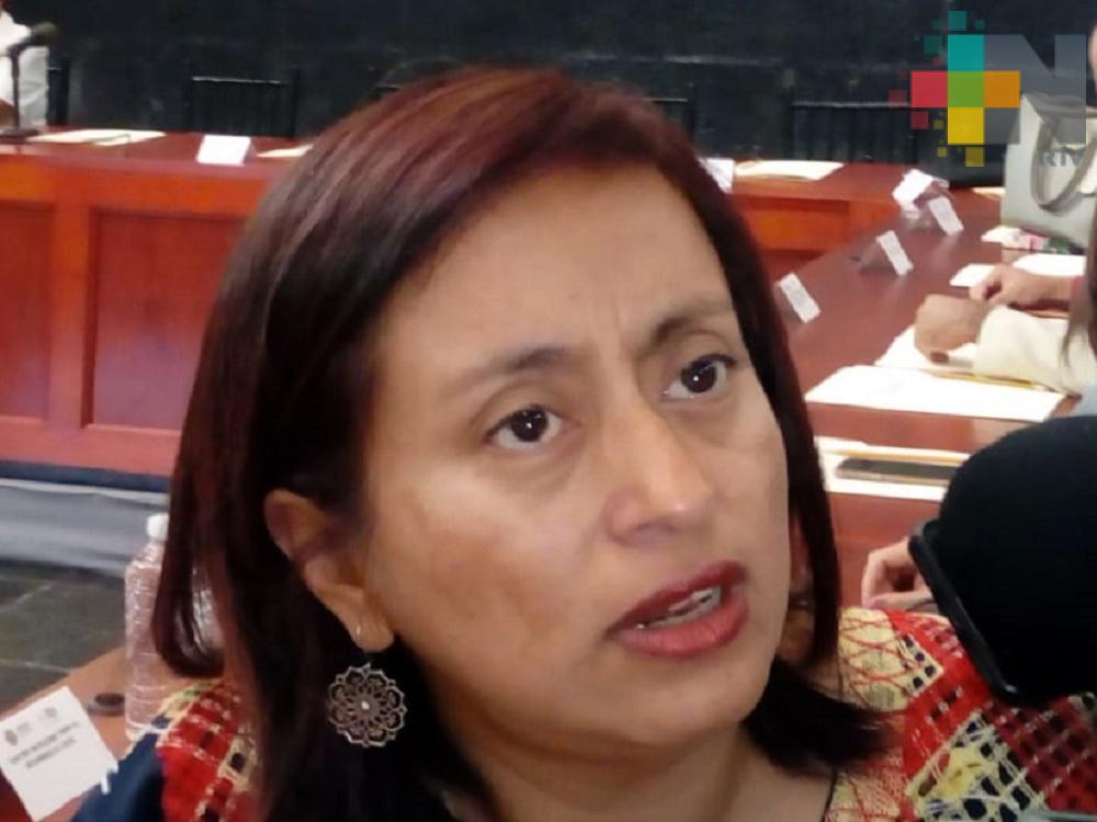 Próximo mes se harán reuniones para conocer avances sobre Alerta de Género en Veracruz