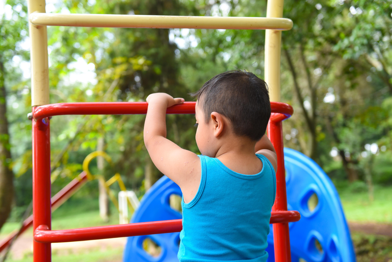 Política pública estatal y municipal se deberán orientar para erradicar violencia en contra de la niñez y la adolescencia