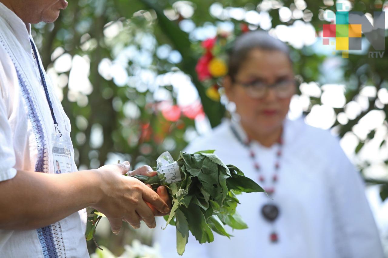 Secretaría de Salud promueve y preserva la medicina tradicional indígena