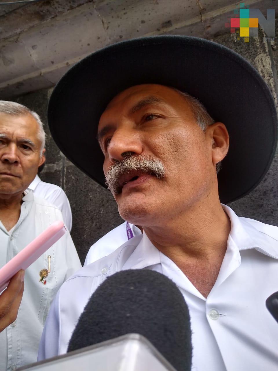 Tener confianza en Guardia Nacional, pide Manuel Mireles