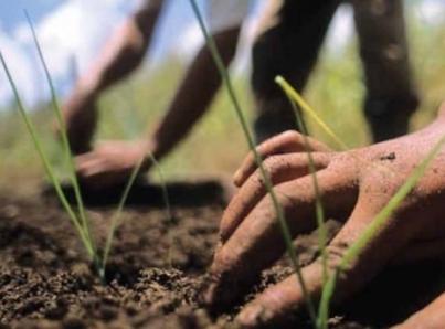EUA dará visas de trabajo temporal a los agricultores guatemaltecos