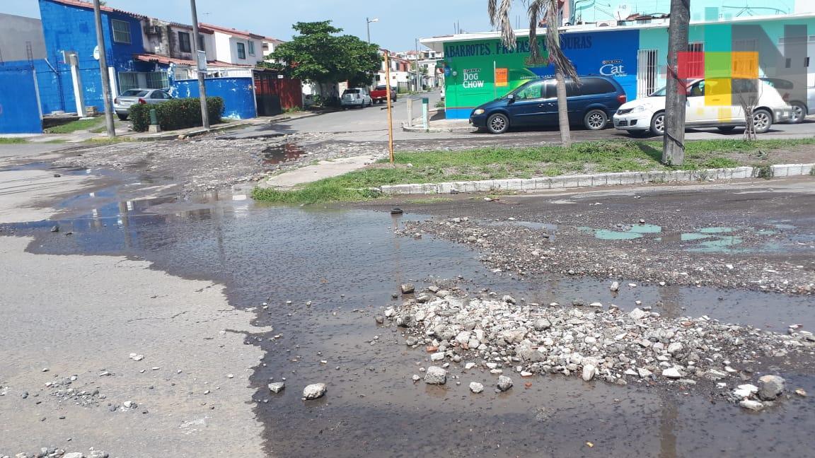Destrozadas calles de fraccionamiento Geo Villas Los Pinos