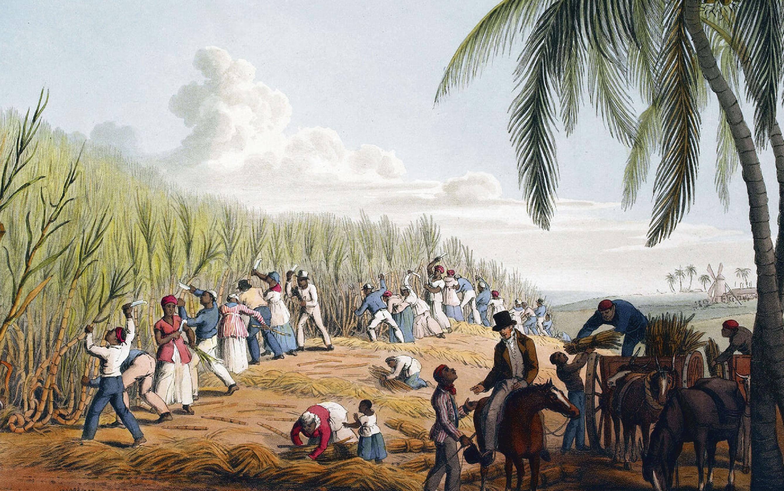 Charla sobre National Geographic y el Caribe en Recinto Sede IVEC