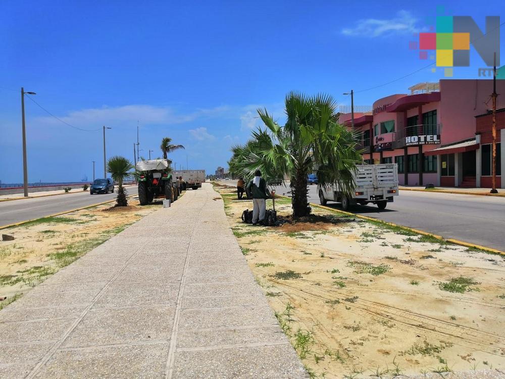 Embellecen malecón costero de Coatzacoalcos