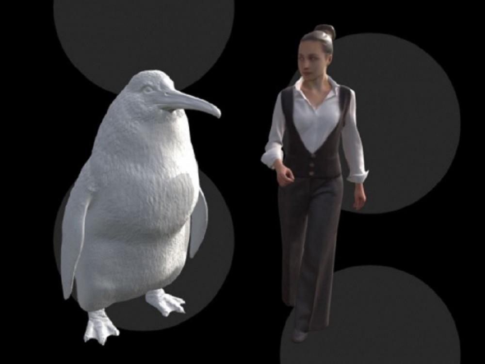 """Otro hallazgo «gigante» en Nueva Zelanda: el """"pingüino monstruo"""""""