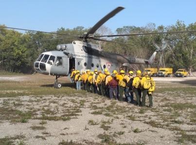 Liquidan al 100 por ciento incendio de Muyil en reserva de Sian Ka´an