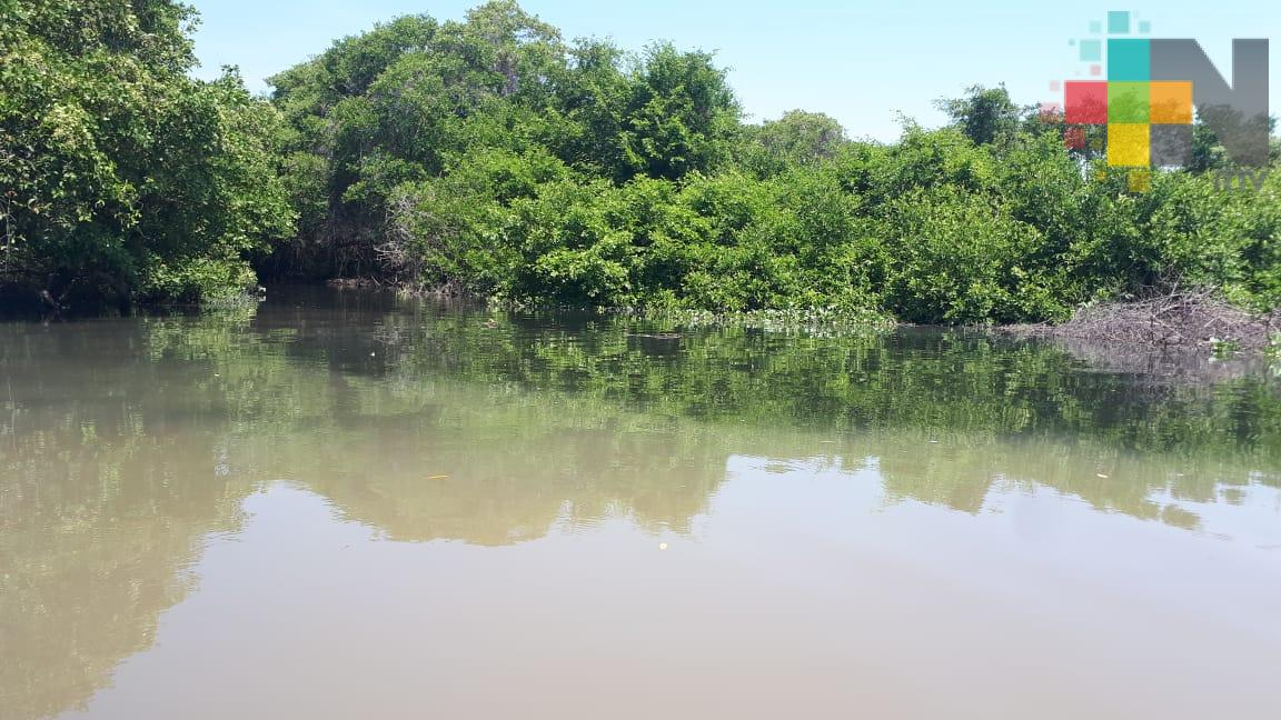 Pese a lluvias, ríos Jamapa y Cotaxtla se encuentran abajo de su escala crítica: PC Medellín