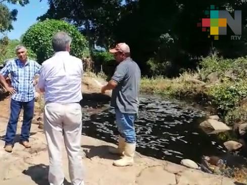Alcoholera derrama miles de litros vinaza a un arroyo en los límites de Yanga y Atoyac