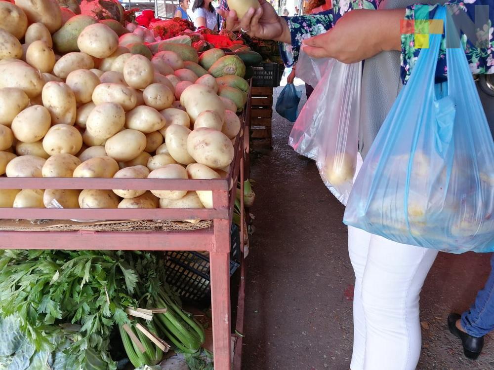 Se estima reducir de 5 al 10% al año uso de bolsas de plástico en Veracruz: Ambientalista