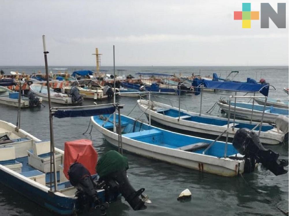 Contaminación en el mar disminuye actividad pesquera