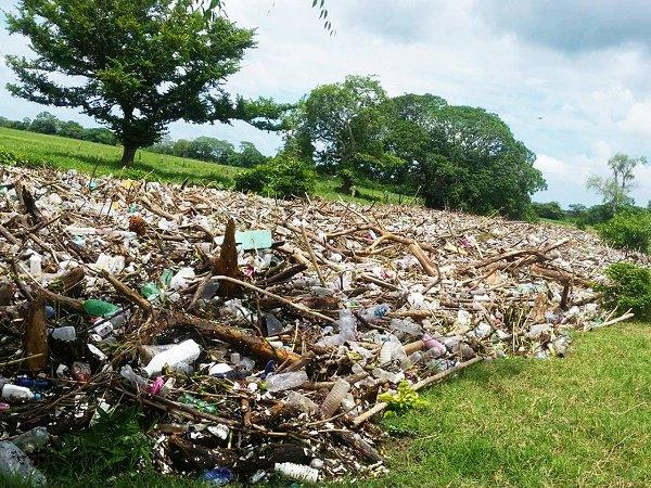 Se evitó que flujo de 60 toneladas de basura llegara a Laguna de Alvarado; ecocidio contenido