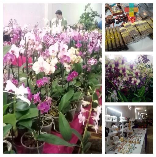 Expo Feria Artesanal de La Orquídea en Coatepec ofrece gran variedad de artículos