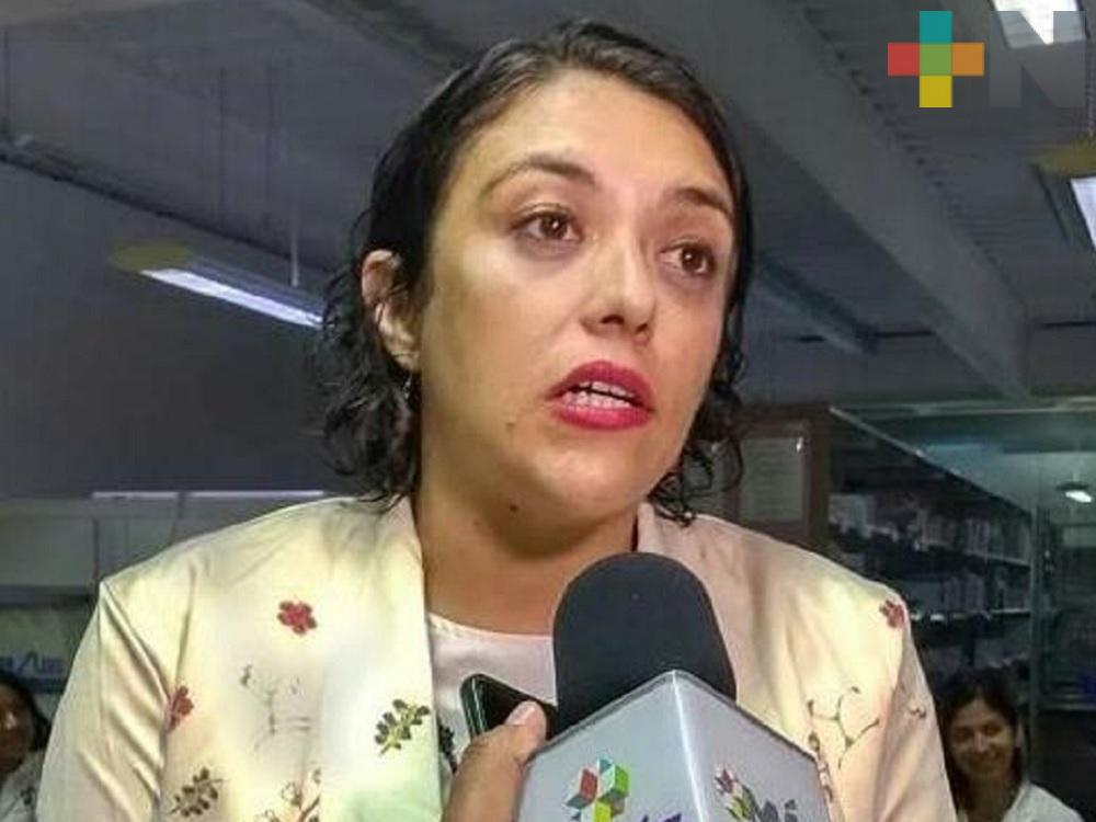 Protección Civil de Veracruz preparada ante Tormenta Tropical «Cristóbal»: Guadalupe Osorno