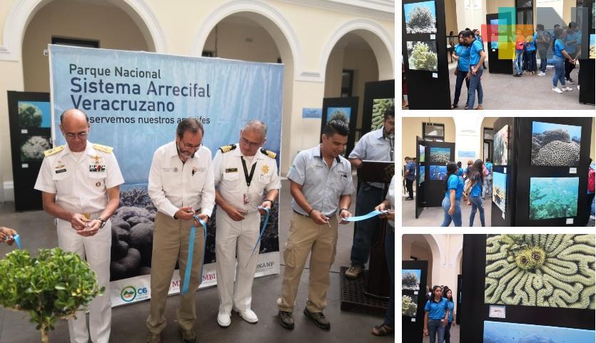 Inauguran exposición fotográfica «Los Arrecifes de Veracruz: vida, belleza y sustento»