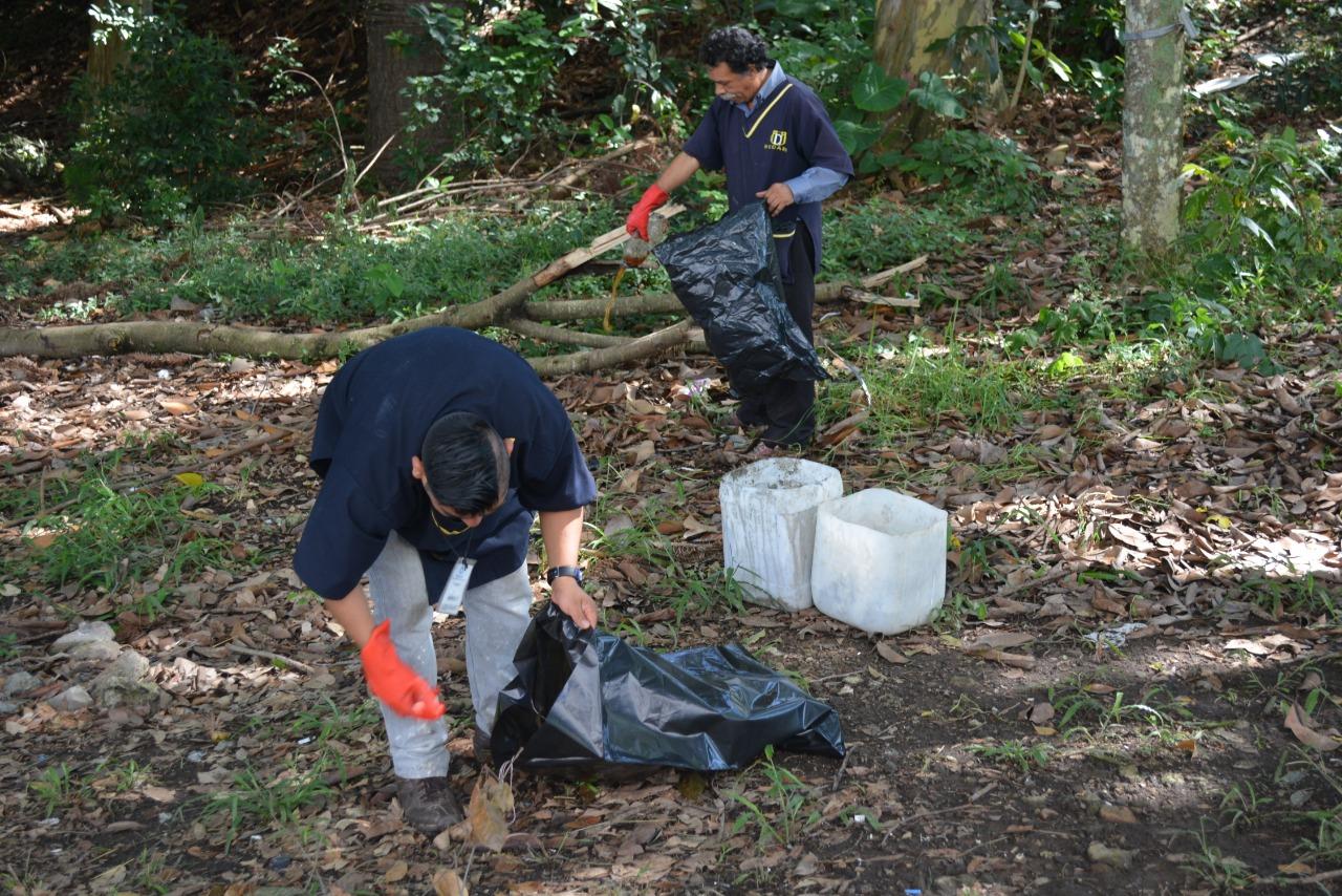 A limpiar calles, playas y bosques en el Día Mundial de la Limpieza