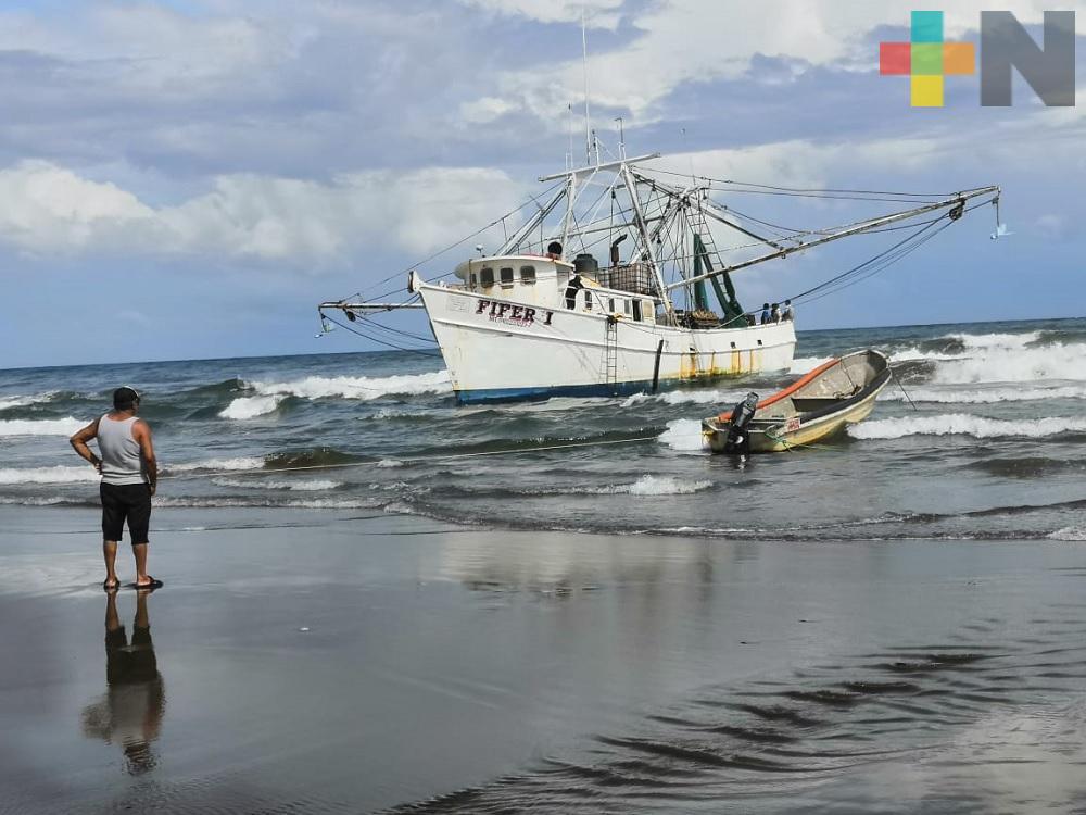 Extienden veda para capturar toda especie de camarón en Golfo de México y mar Caribe