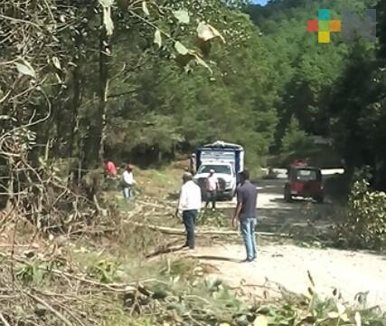 Podan árboles y limpian cunetas en carretera Huayacocotla-Tulancingo