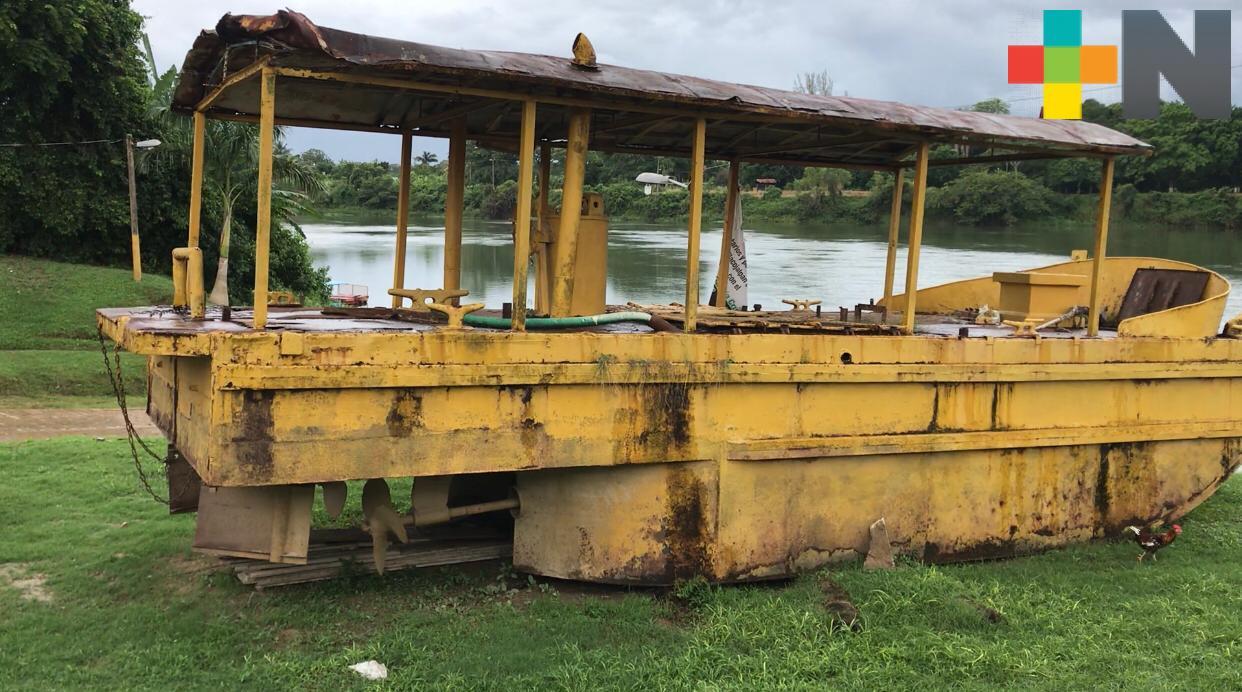 Burro que surcaba el Papaloapan será imagen turística de Tlacojalpan