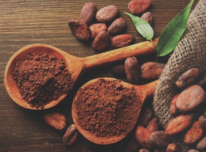 Decretan el 2 de septiembre de cada año «Día Nacional del Cacao y el Chocolate»