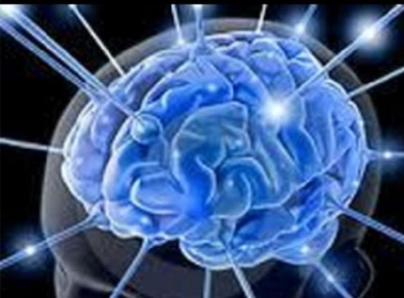 Cerebro puede amar a varias personas al mismo tiempo: Especialista