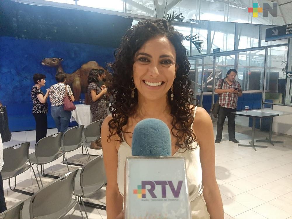 Positiva la reforma sobre el divorcio sin ninguna causal: Red de Mujeres Feministas de Veracruz