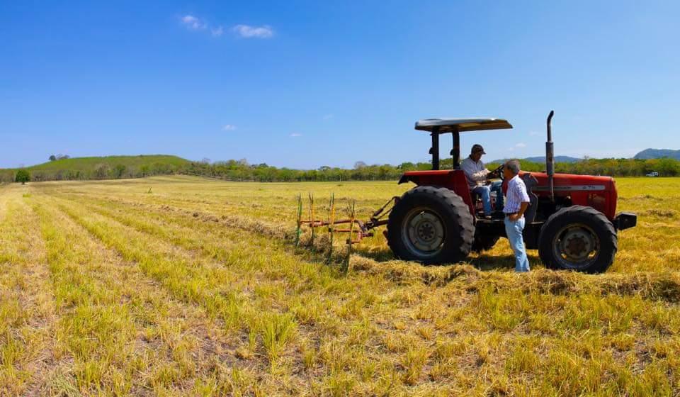 Asociación Ganadera y Agrícola  de Veracruz considera prioritario aplicar políticas agroecológicas