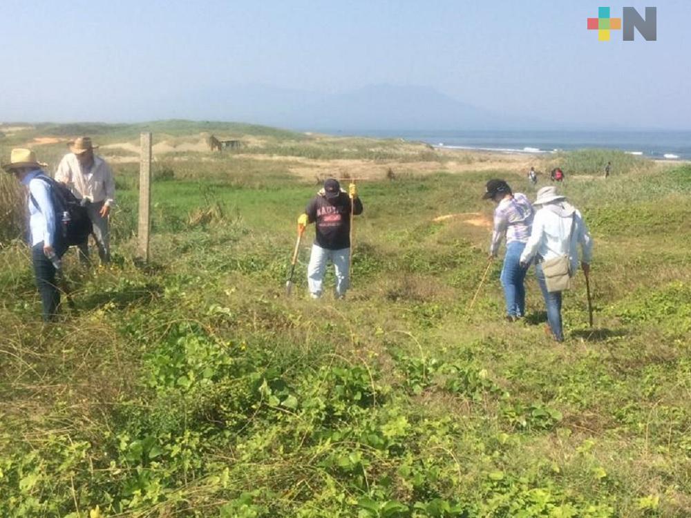 Encuentran fragmentos óseos en playas de Coatzacoalcos