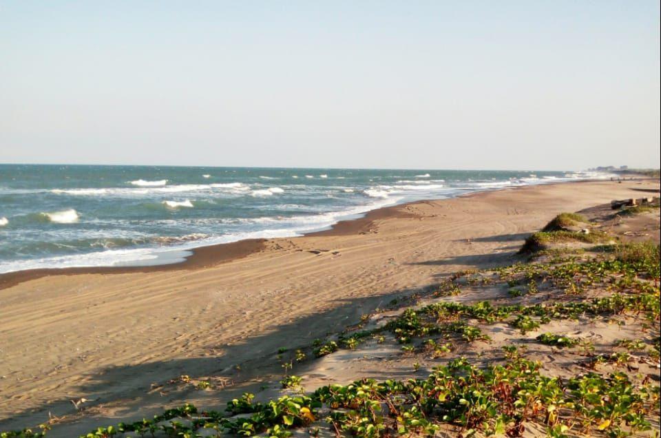 Playa Navarro, Vega de Alatorre