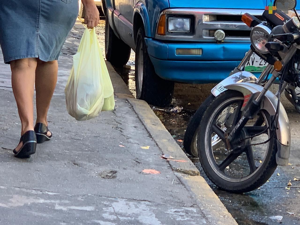 PMA iniciará operativos en comercios para evitar uso de bolsas de plástico