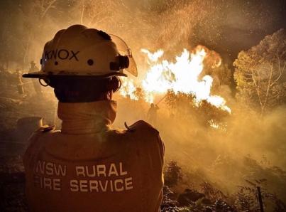 Nicole Kidman dona medio millón de dólares para combatir incendios